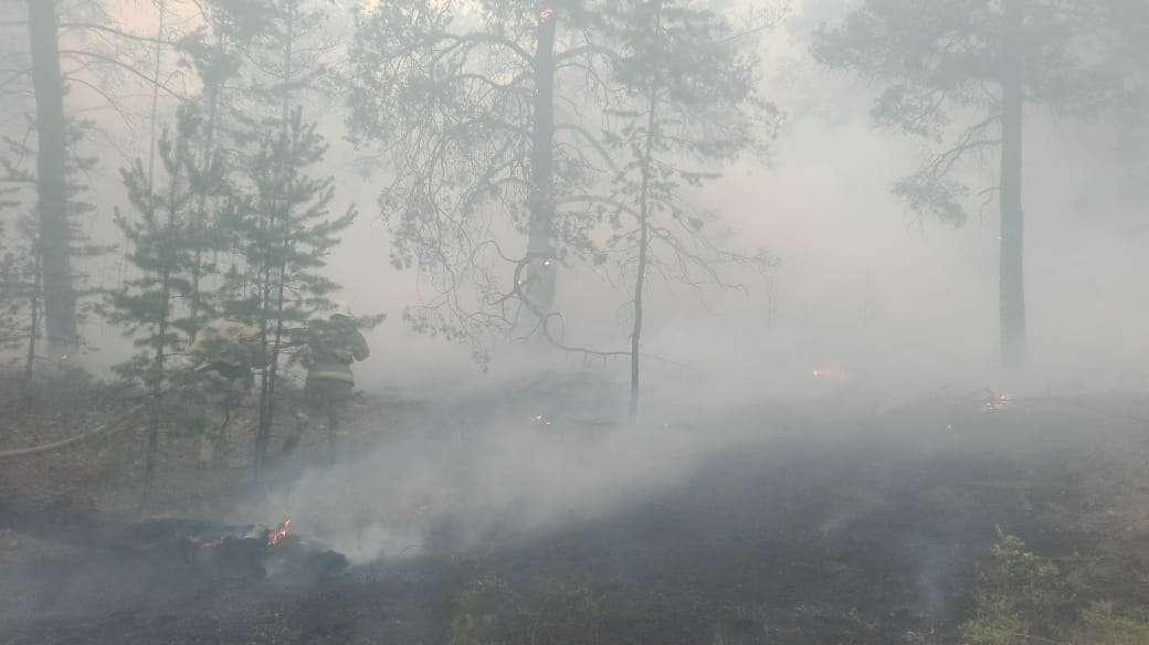 Пожарные работают в условиях нулевой видимости