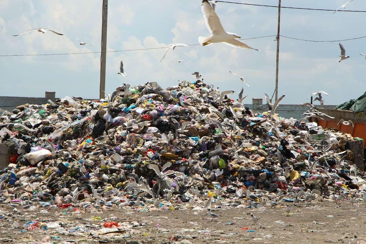 Ежегодно на мусороперерабатывающий завод поступает около 300 тысяч тонн мусора