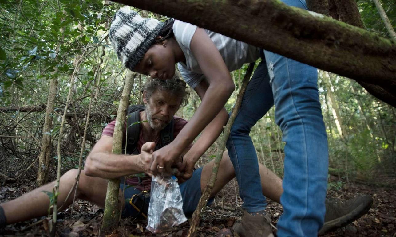 Полный отчёт о своих находках в лесу учёные обнародуют через два месяца