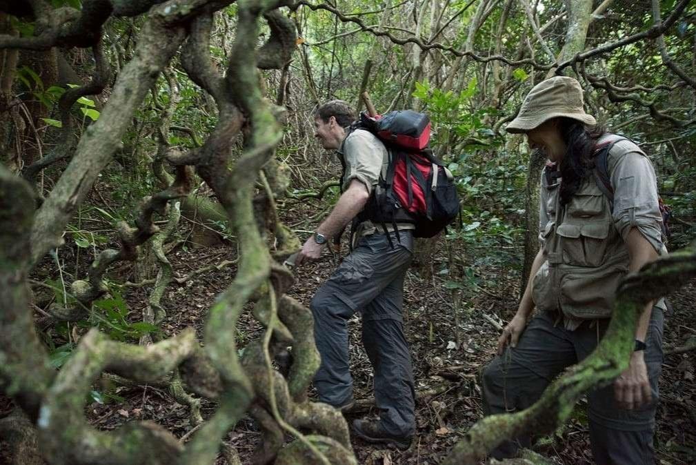 Учёные из пяти стран исследовали местность, куда ещё не ступала нога человека