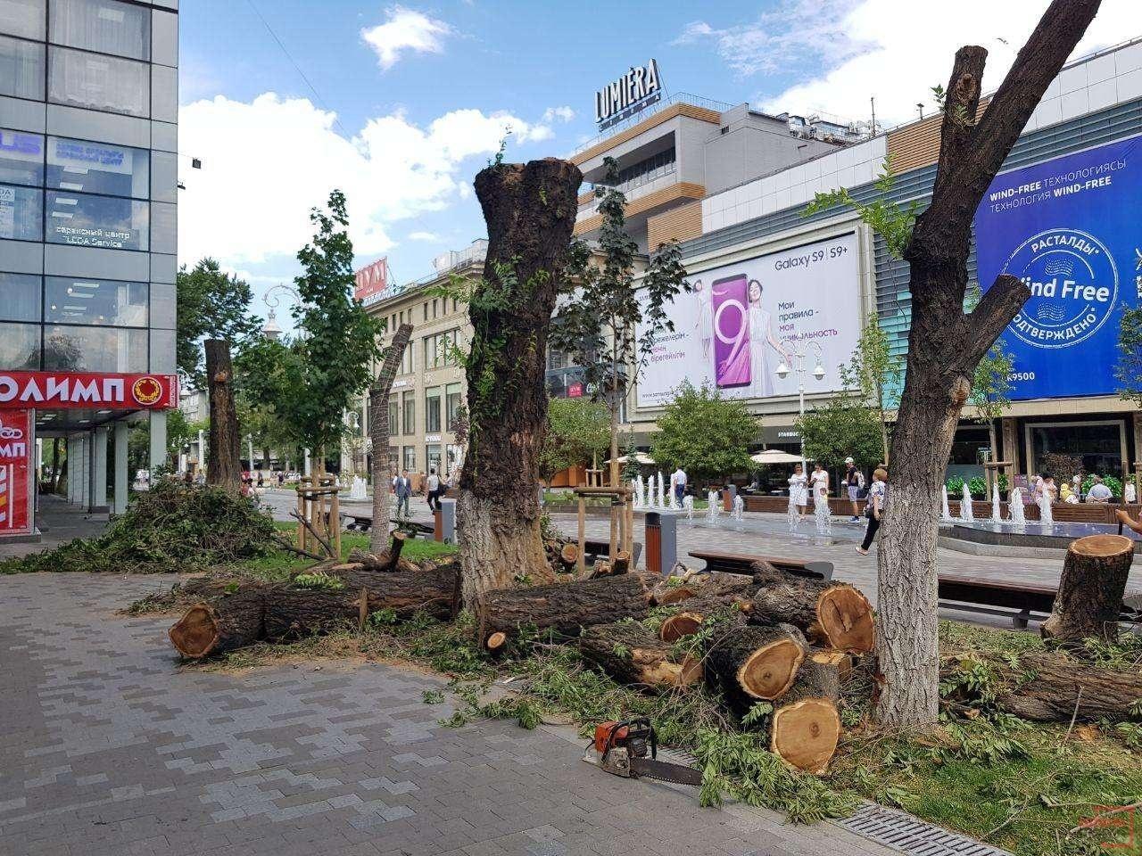 На Арбате срубили деревья