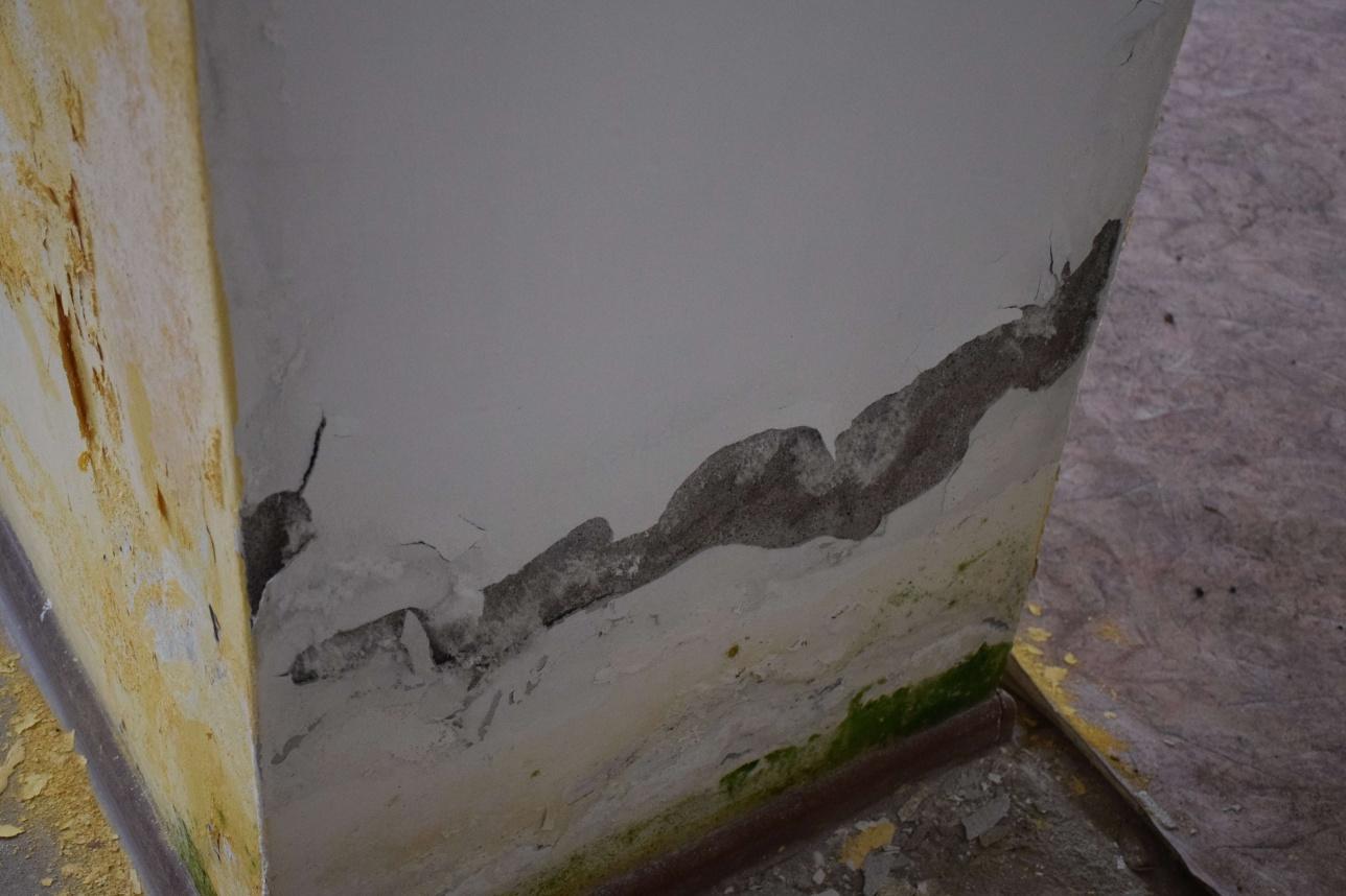 """Несмотря на реставрацию, стены """"Дома невесты"""" в трещинах и плесени"""