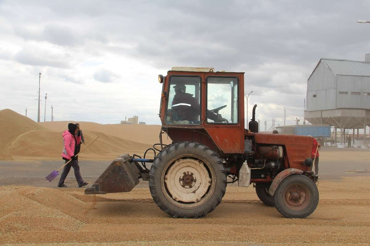 Зерновой ток представляет собой площадку с комплексом машин, оборудования и сооружений