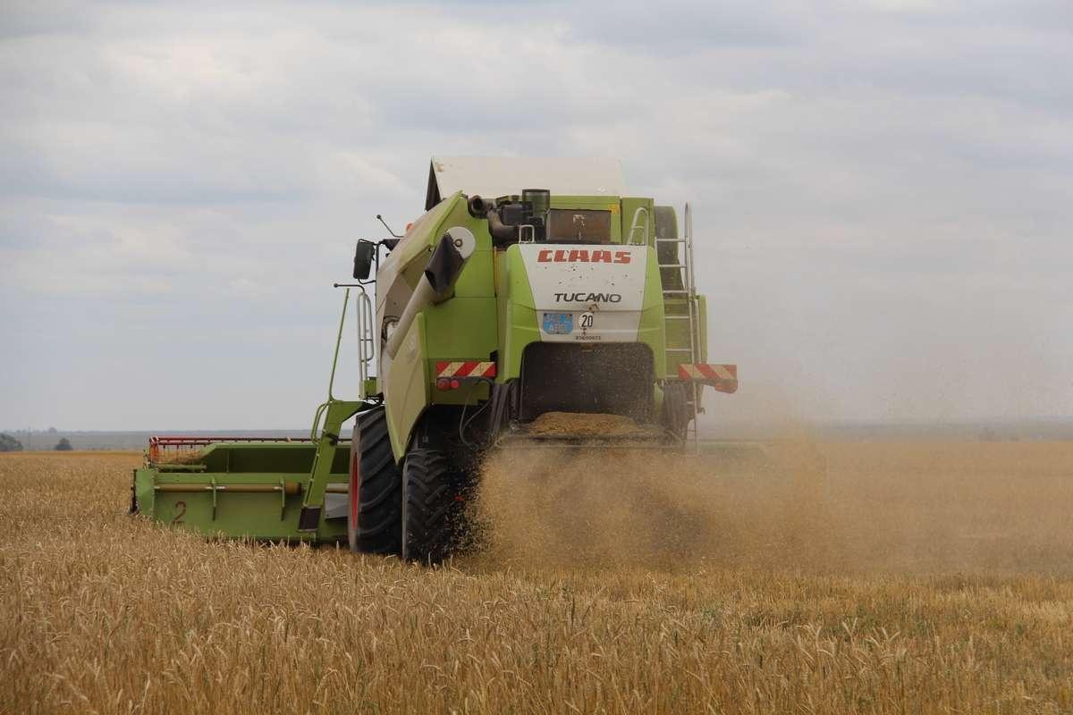 Зерноуборочный комбайн, задействованный для уборки зерна близ Астаны