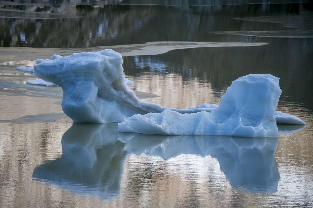 Спустя время ледяные глыбы превращаются в самые настоящие айсберги