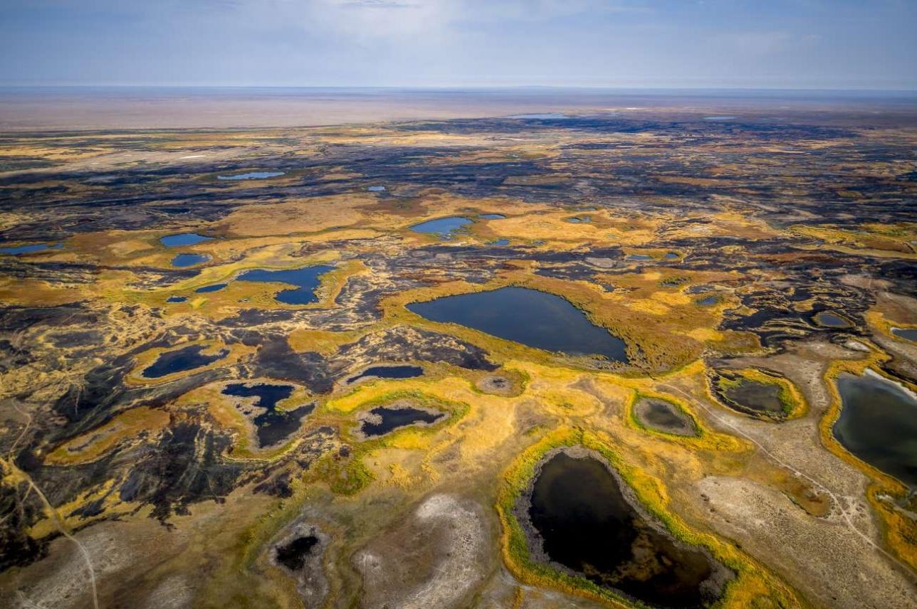 Озёра в Мойынкуме образованы грунтовыми водами