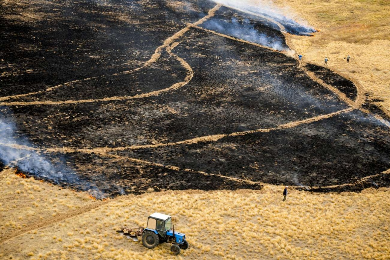 Пока одни местные жители поджигают степь, другие её тушат