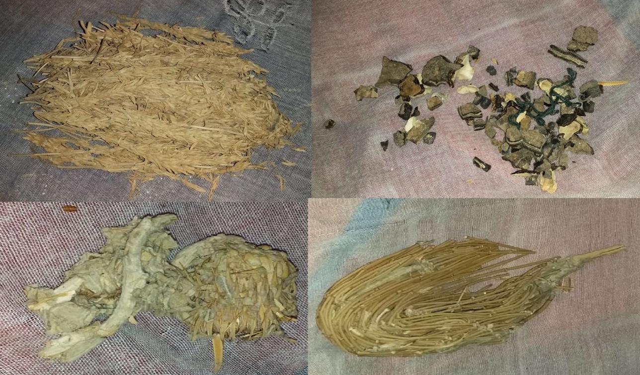 Әбдікамал атаның дәріге пайдаланған тасбақа қабығы мен дәрлік өсімдіктері
