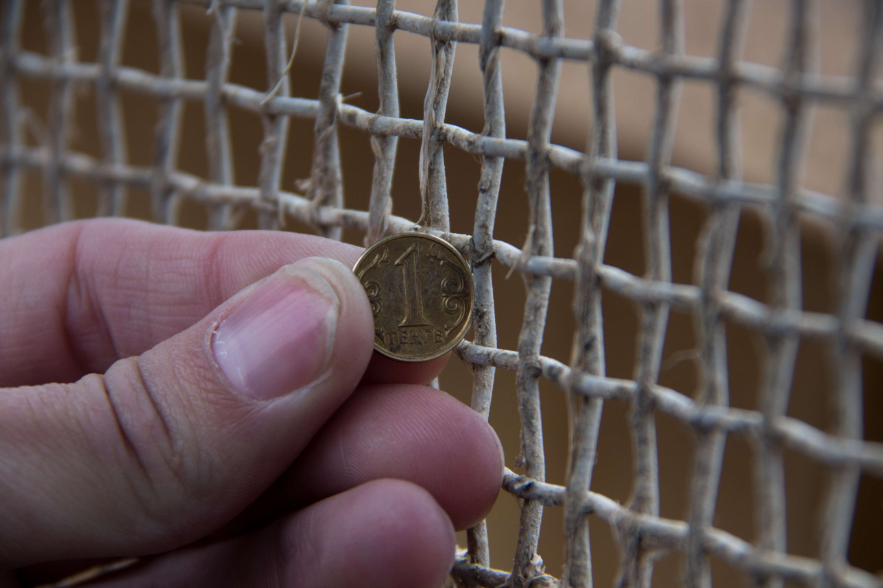 Ячейки сетки, которая стоит на рыбозащитном сооружении АТЭЦ