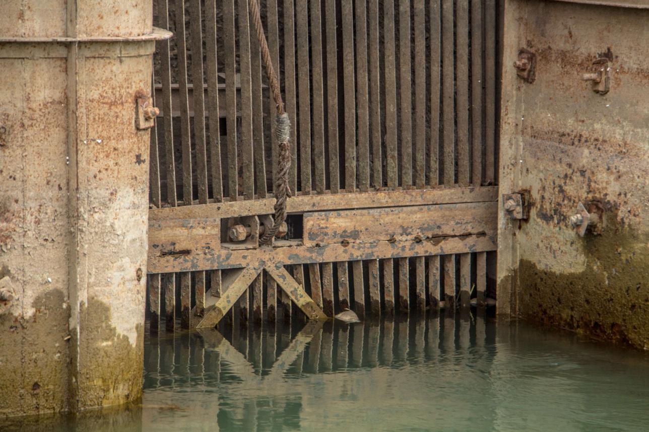 Рыба в канале пыталась билась от защитные жалюзи насосной станции
