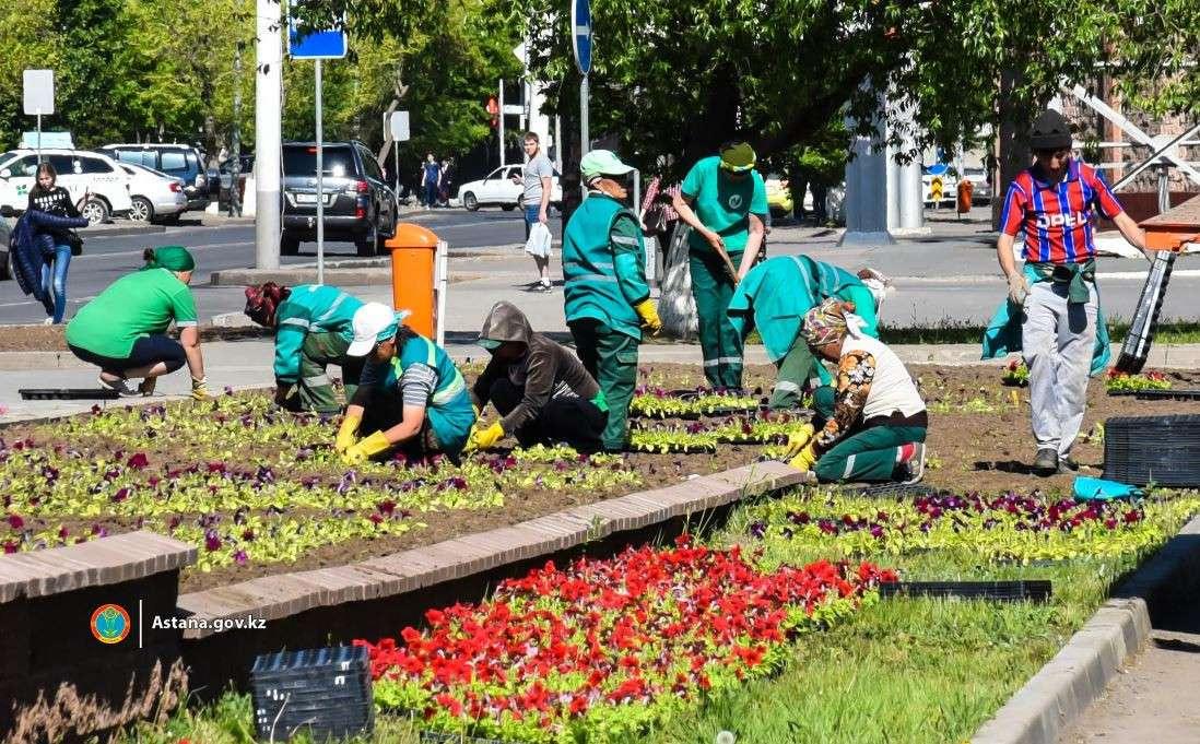 В Нур-Султане начали работу по посадке цветов