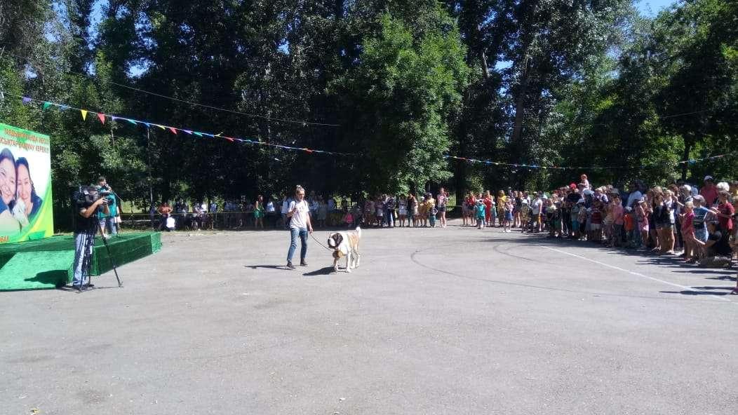 В Талдыкоргане прошла выставка собак и кошек