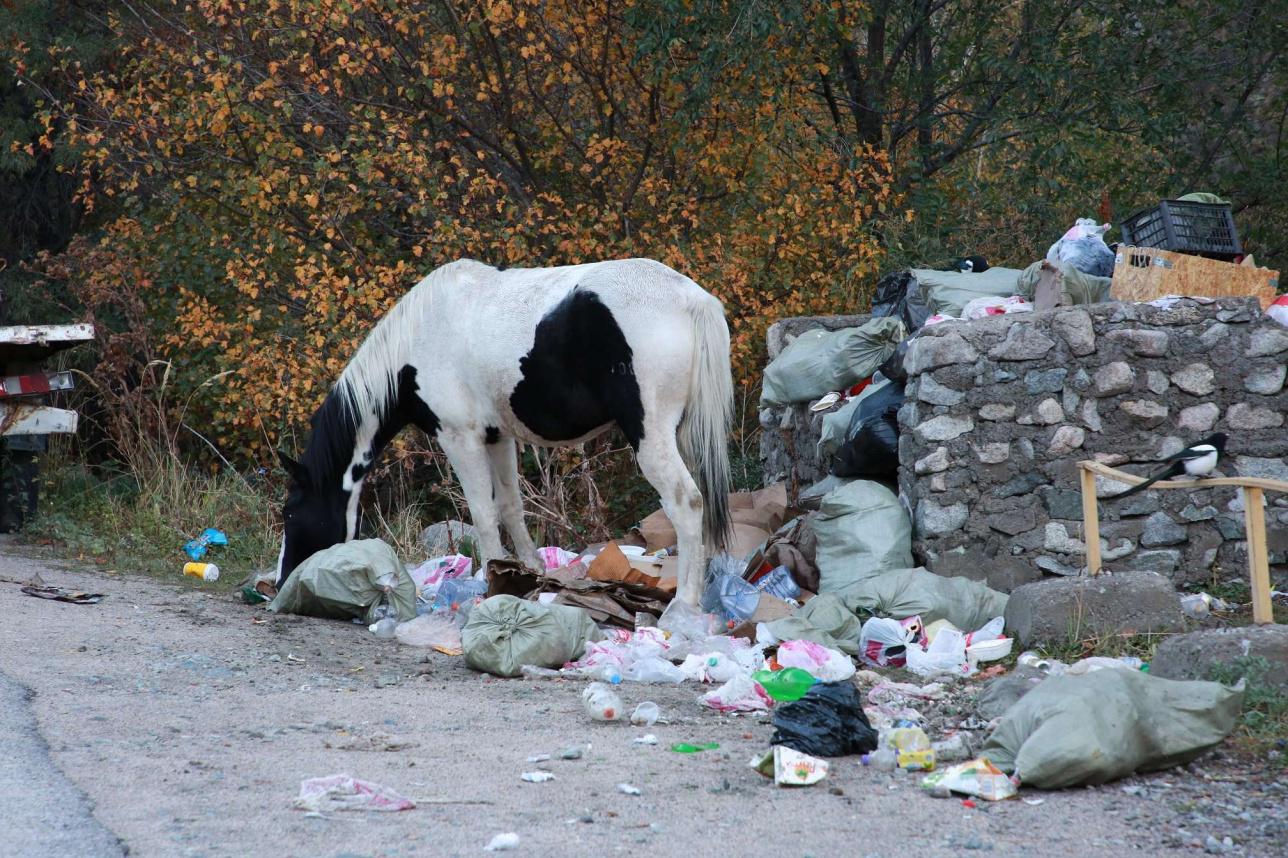 Свалка мусора в Большом Алматинском ущелье.