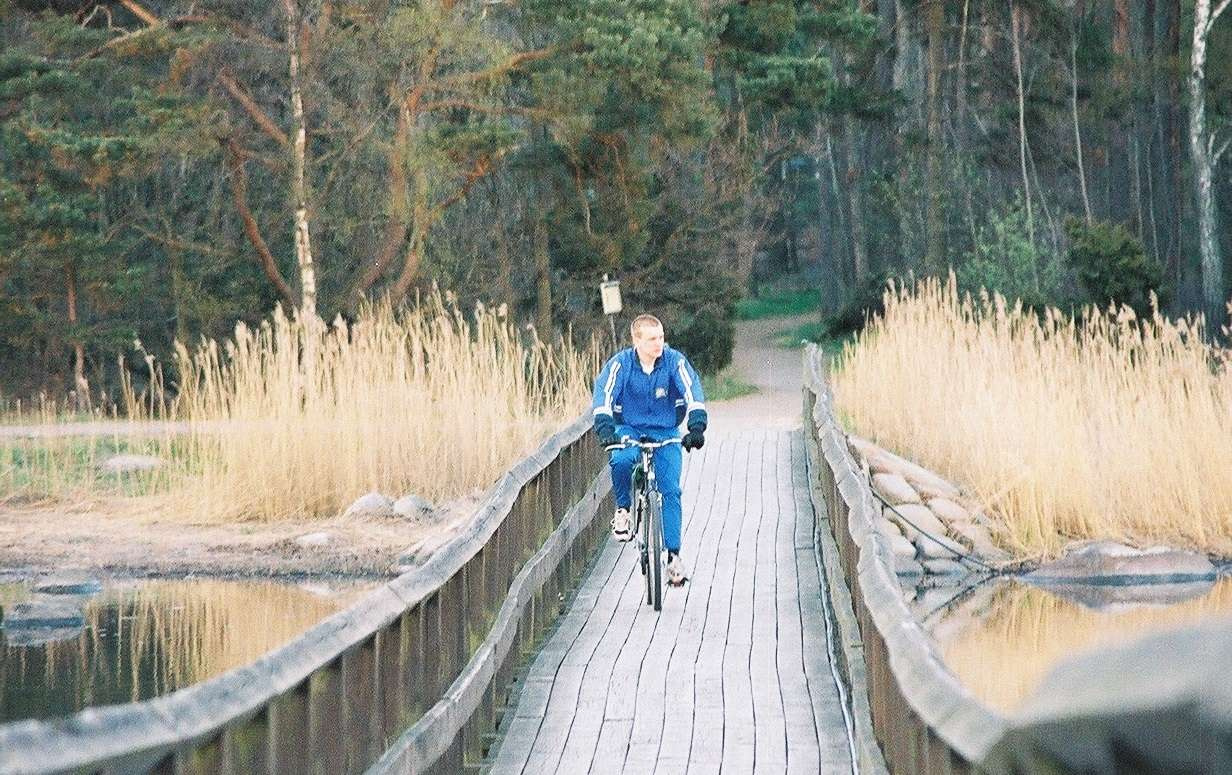 Лес рядом с Кальмаром (Швеция)