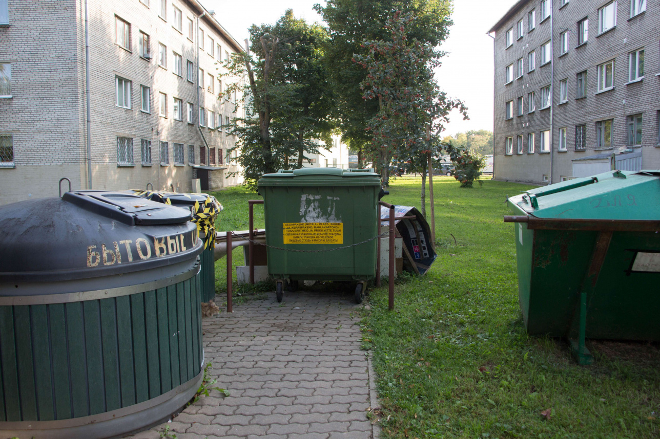 Контейнеры для раздельного сбора отходов во дворе многоквартирного дома