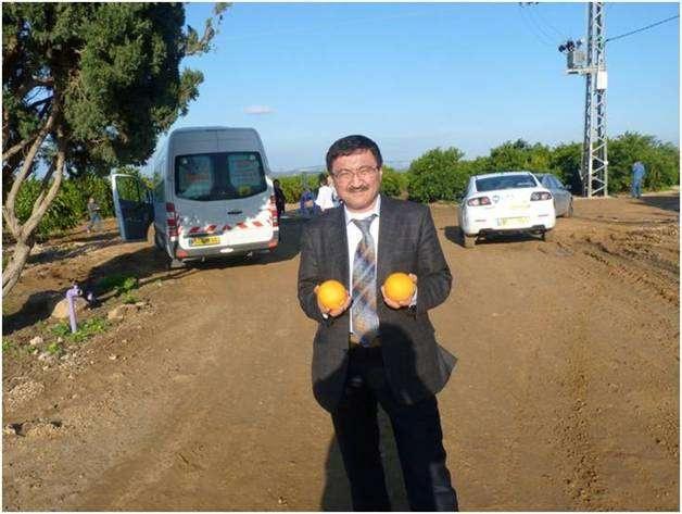 Израильдің мынандай апельсині де тұқымнан өскен